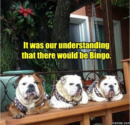 Bulldogs Got The No Bingo Blues