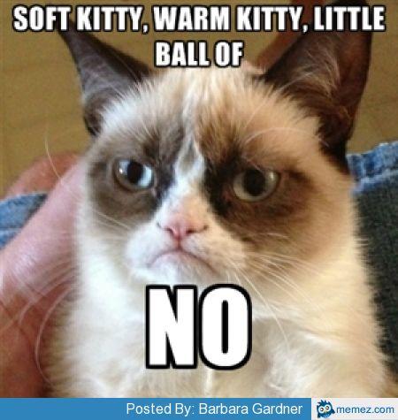 Soft Kitty Meme Blueridge Wallpapers
