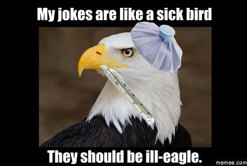 my jokes are like a sick bird memes