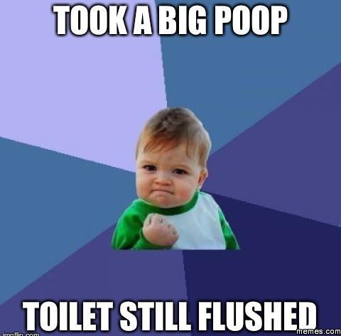 Toilet still flushed for Window licker meme
