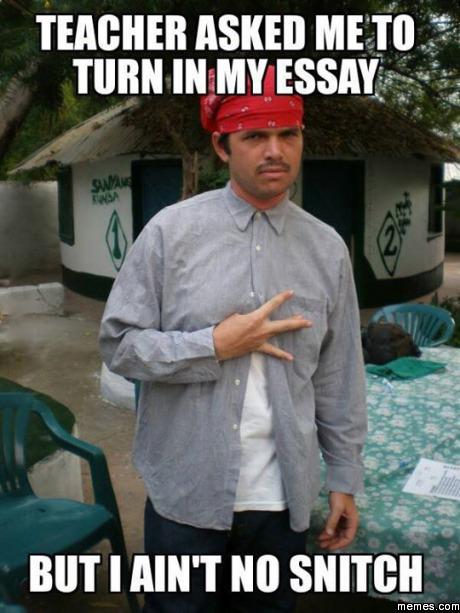 Write my essay affordable