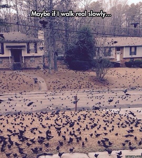 Maybe if I walk really slowly
