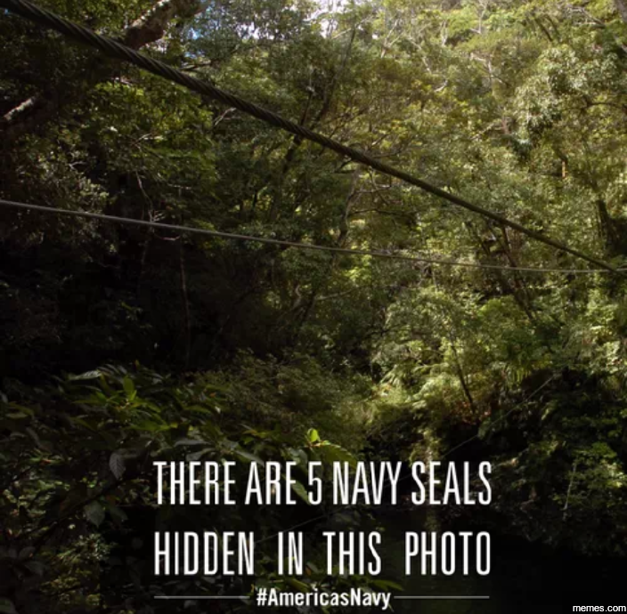 There are 5 Navy Seals hidden...   Memes.com