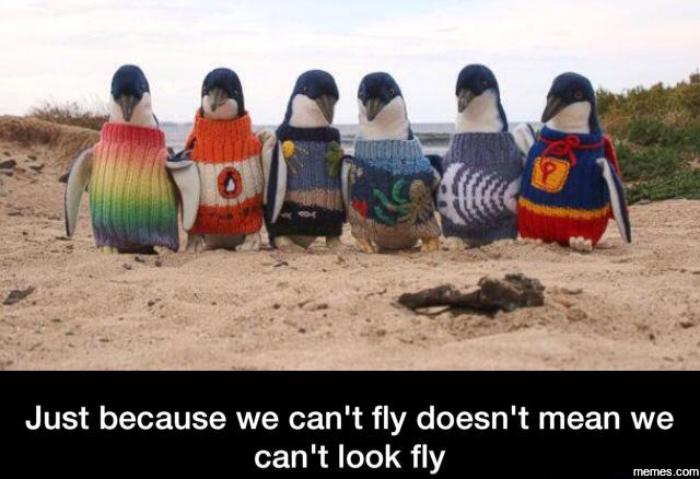 Just because we can't fly doesn't mean we can't look fly