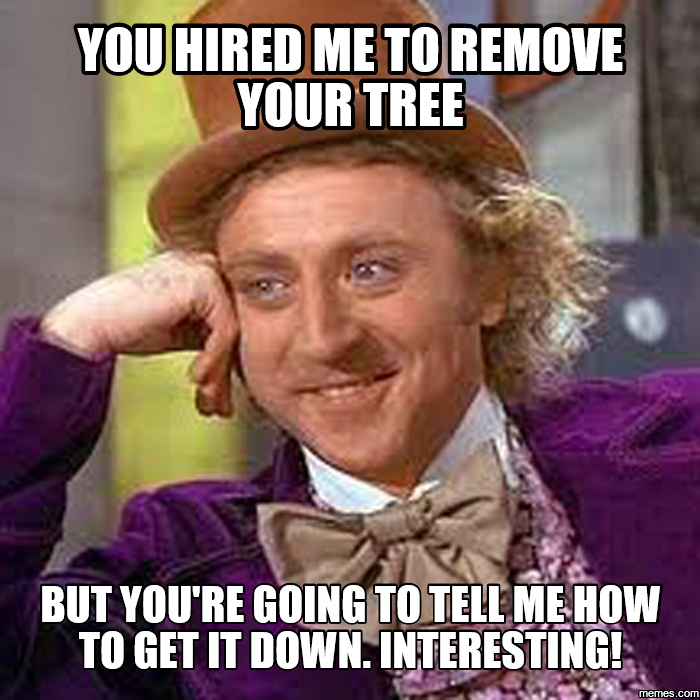 you hired me to remove your tree but you're going to tell me how ...