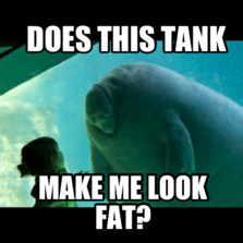 overlord manatee hilarious pictures with captions