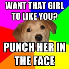 17949 advice dog meme keywords and pictures