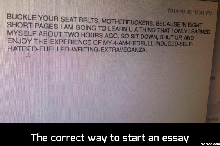 The perfect way to start an essay  How to Write an Essay